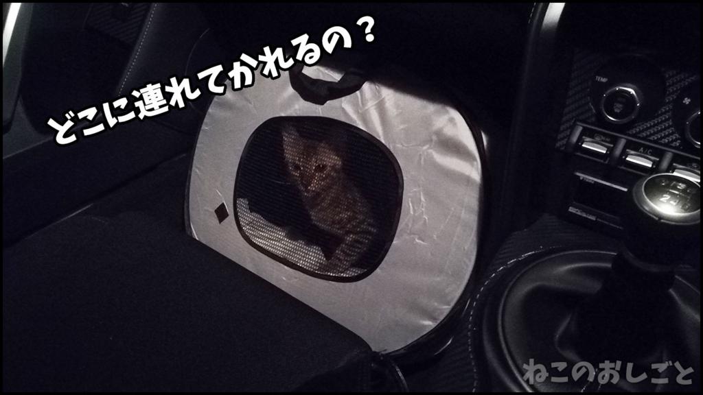f:id:necozuki299:20180414005449j:plain