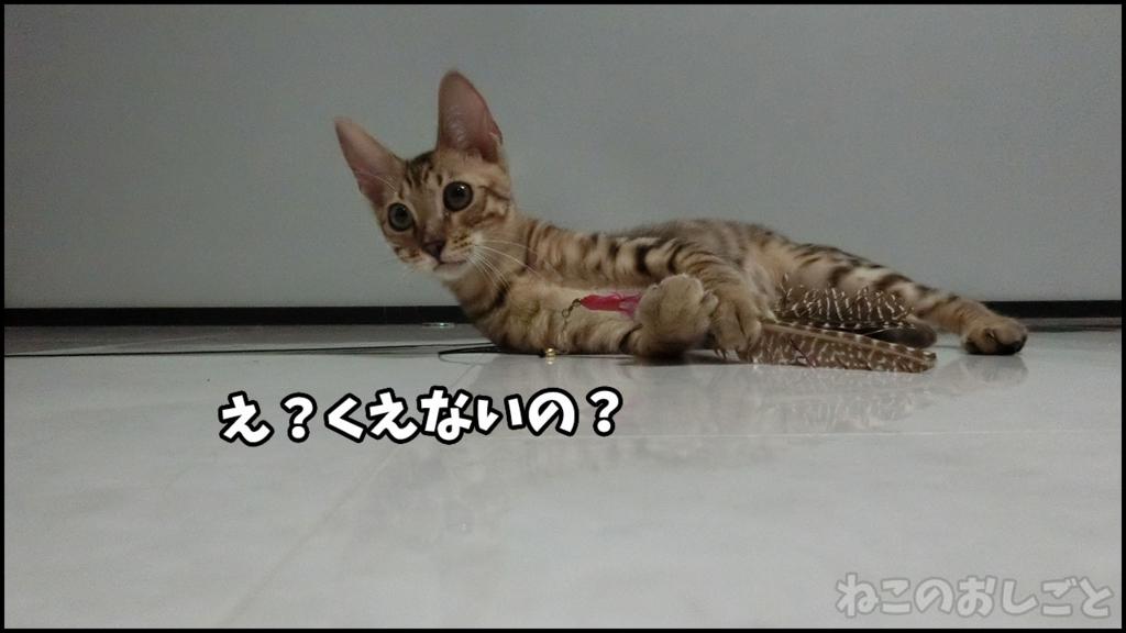 f:id:necozuki299:20180414232141j:plain