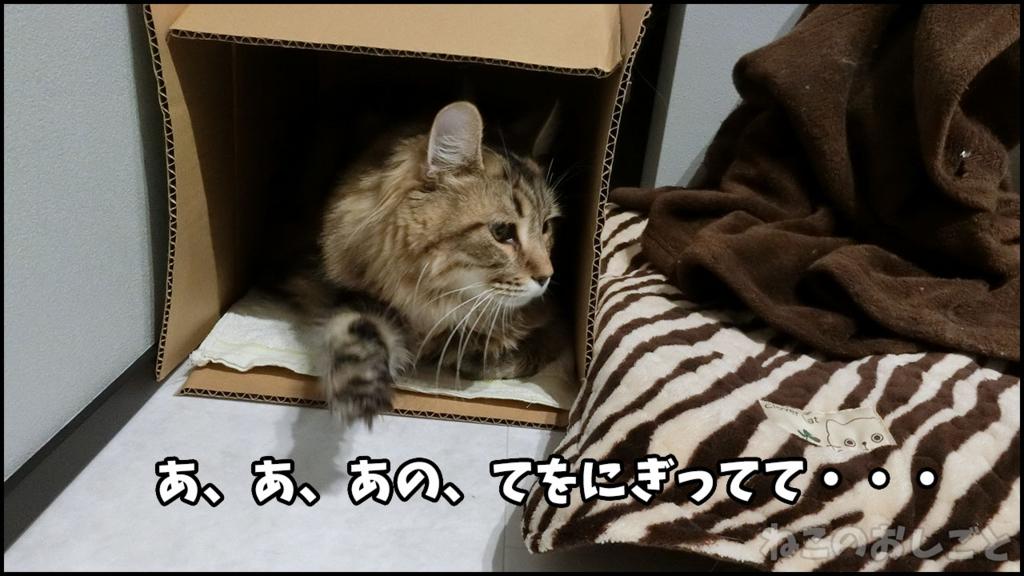 f:id:necozuki299:20180415220756j:plain