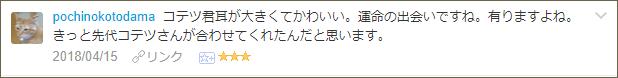 f:id:necozuki299:20180415223544p:plain