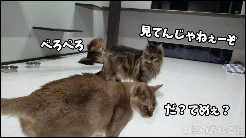 f:id:necozuki299:20180417022404j:plain