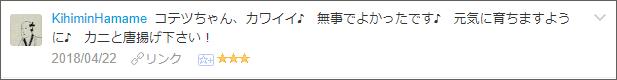 f:id:necozuki299:20180423171102p:plain