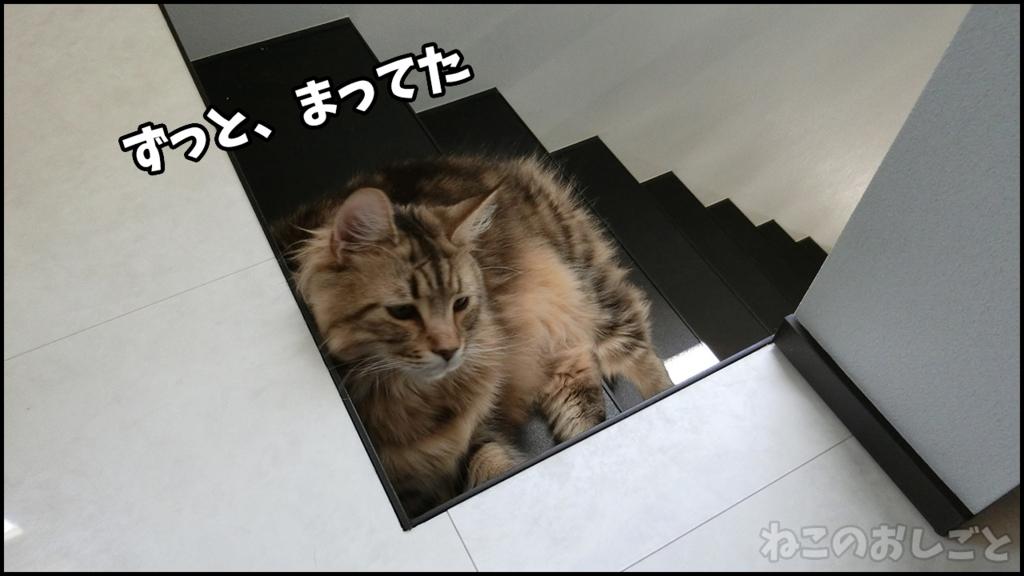 f:id:necozuki299:20180429124506j:plain