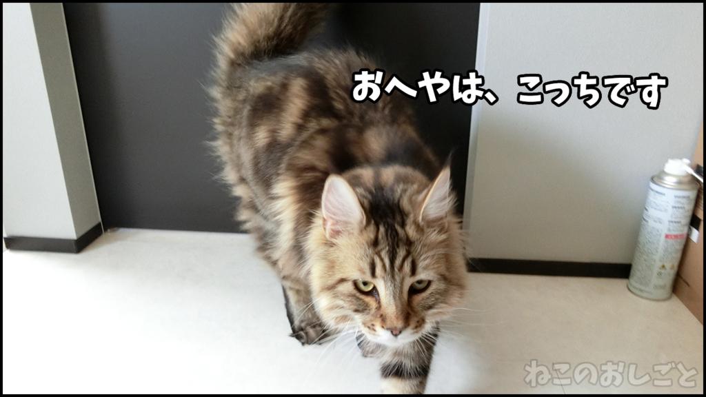 f:id:necozuki299:20180429124515j:plain