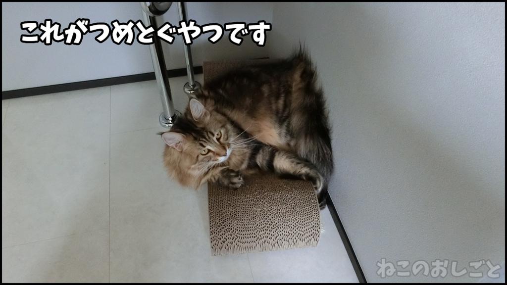 f:id:necozuki299:20180429124622j:plain