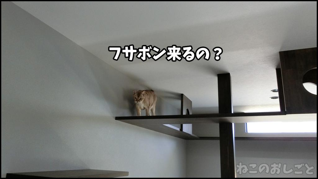 f:id:necozuki299:20180429133319j:plain