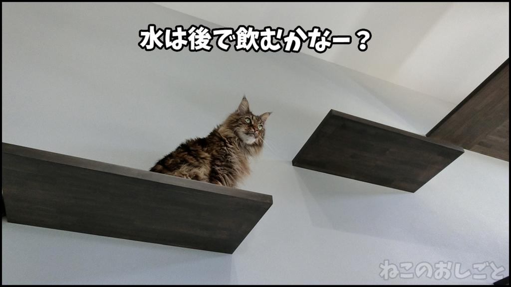 f:id:necozuki299:20180429133327j:plain