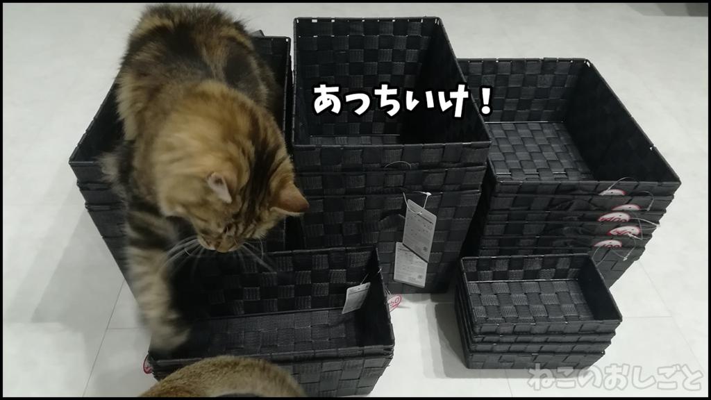 f:id:necozuki299:20180506213203j:plain