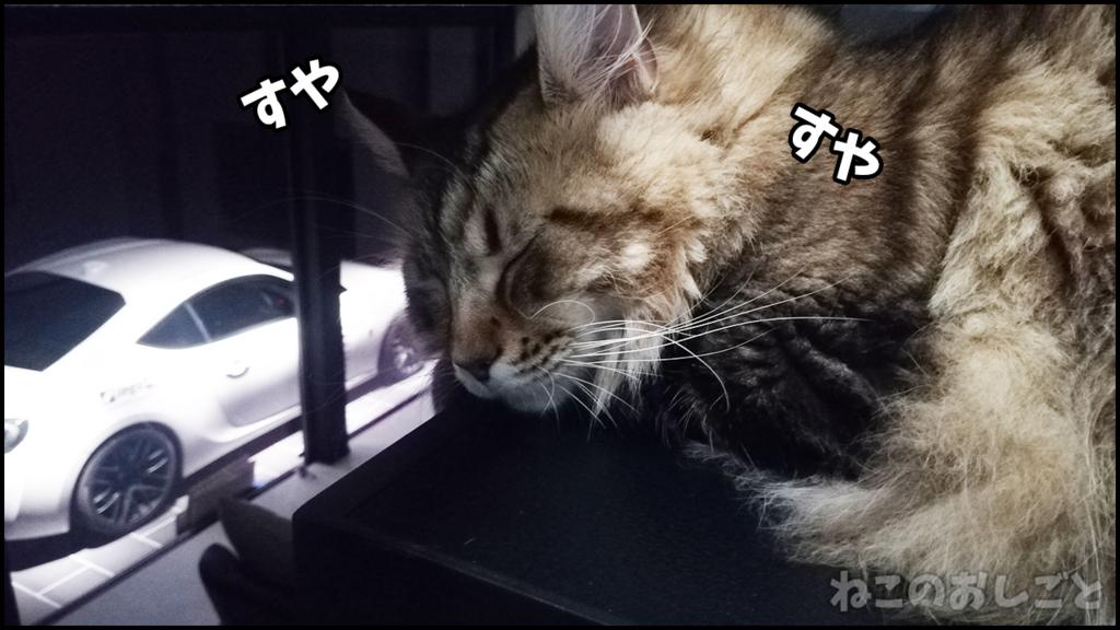 f:id:necozuki299:20180509155508j:plain