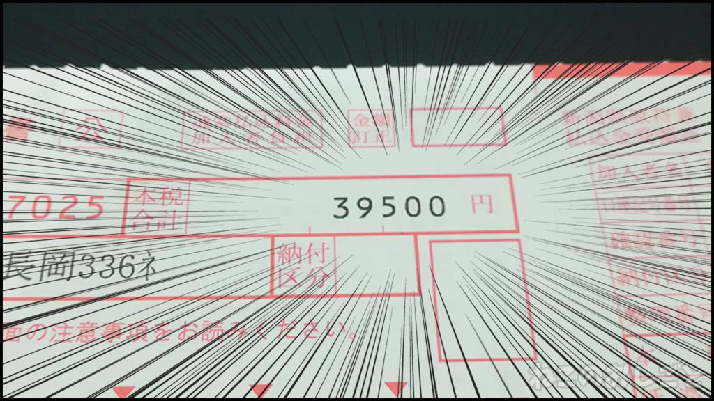 f:id:necozuki299:20180510001123j:plain