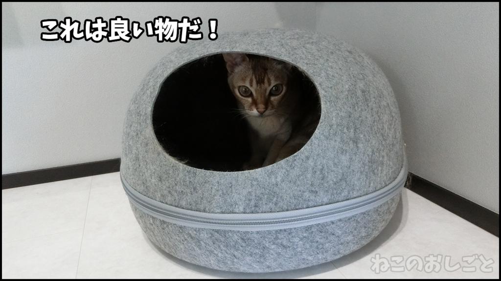 f:id:necozuki299:20180516140948j:plain