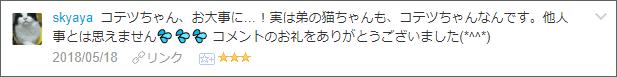 f:id:necozuki299:20180519233054p:plain