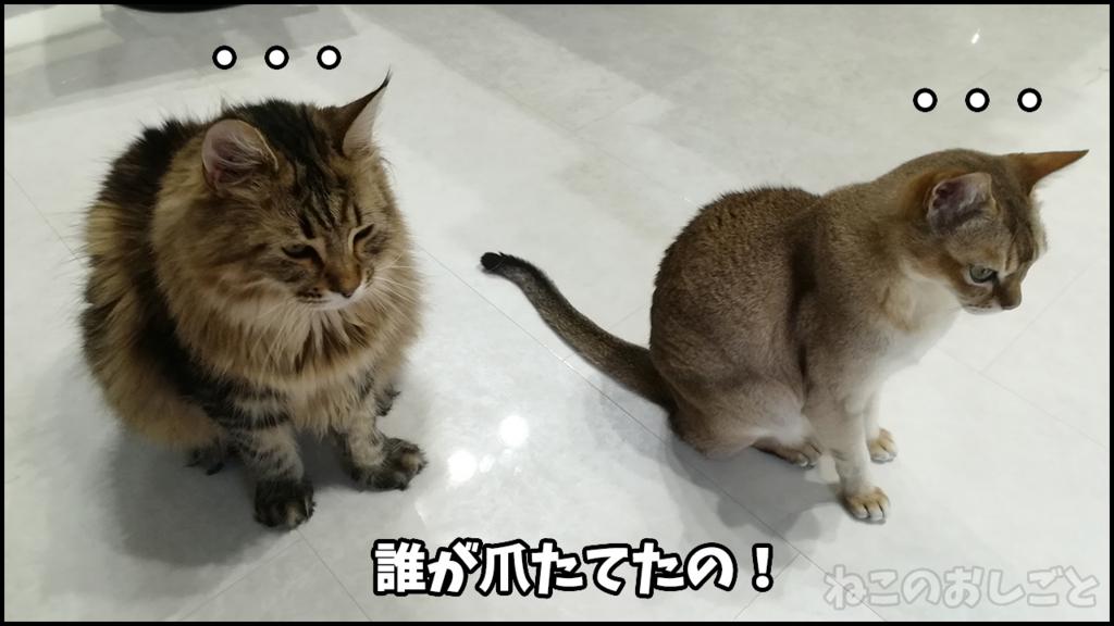 f:id:necozuki299:20180525181957j:plain