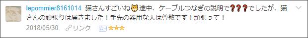 f:id:necozuki299:20180531020006p:plain