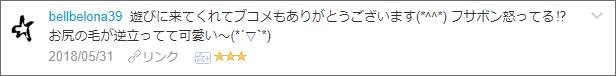 f:id:necozuki299:20180601203928p:plain