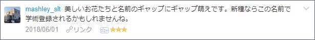 f:id:necozuki299:20180602191256p:plain