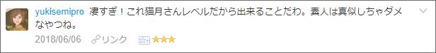 f:id:necozuki299:20180607023931p:plain