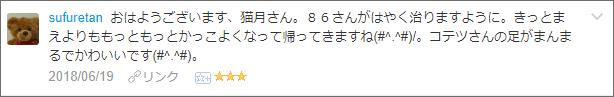 f:id:necozuki299:20180619234331p:plain