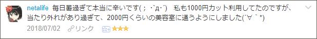 f:id:necozuki299:20180702222231p:plain