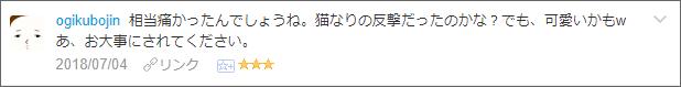 f:id:necozuki299:20180704164935p:plain