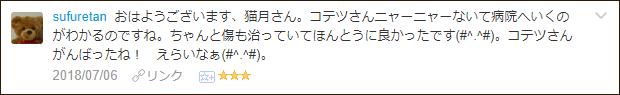 f:id:necozuki299:20180706194525p:plain