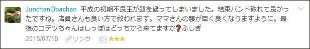 f:id:necozuki299:20180718192127p:plain