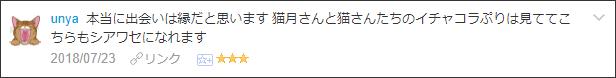 f:id:necozuki299:20180723202143p:plain