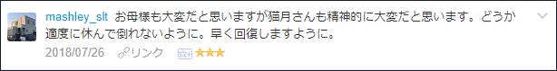 f:id:necozuki299:20180726110713p:plain