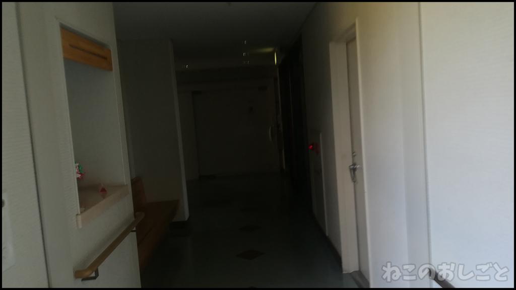 f:id:necozuki299:20180730183550j:plain