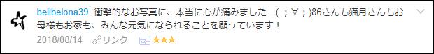 f:id:necozuki299:20180816052215p:plain