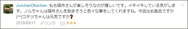 f:id:necozuki299:20180818041116p:plain