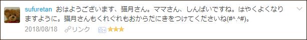 f:id:necozuki299:20180819052409p:plain