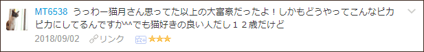 f:id:necozuki299:20180903203658p:plain