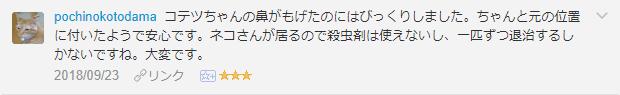 f:id:necozuki299:20181002201743p:plain