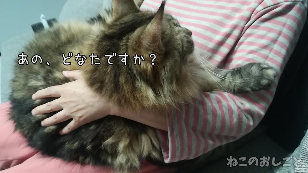 f:id:necozuki299:20181003161525j:plain