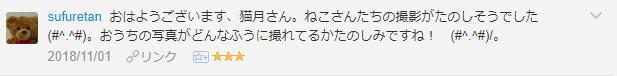 f:id:necozuki299:20181101164357p:plain