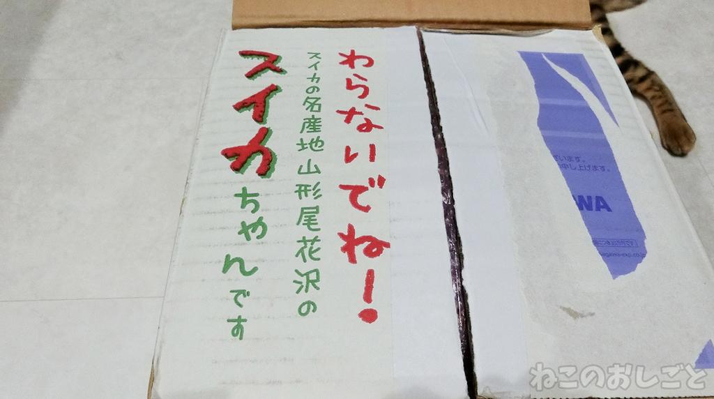 f:id:necozuki299:20181117225518j:plain