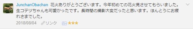 f:id:necozuki299:20181117233903p:plain