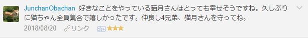 f:id:necozuki299:20181118151719p:plain