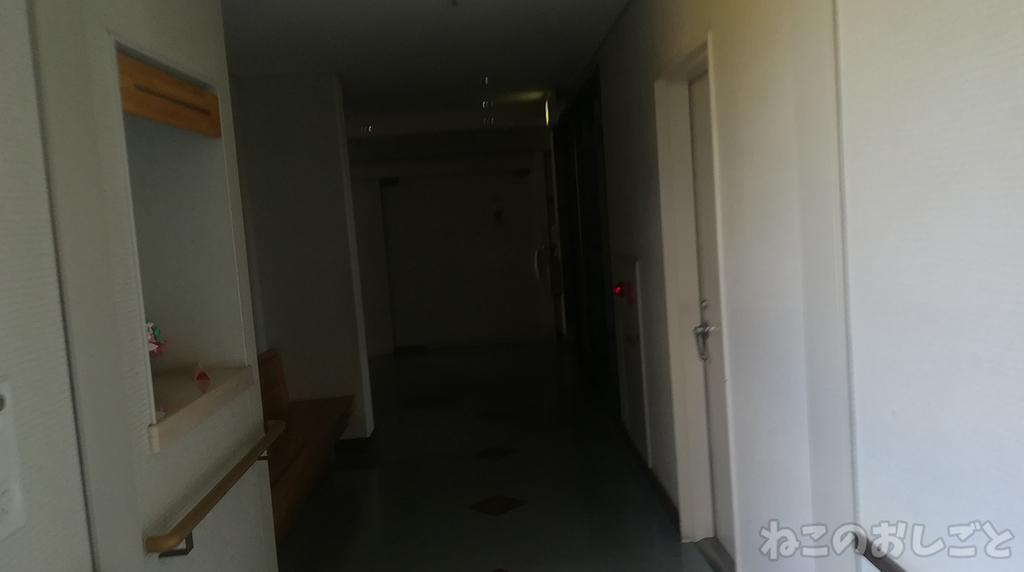 f:id:necozuki299:20181118174648j:plain