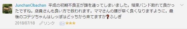 f:id:necozuki299:20181119003542p:plain