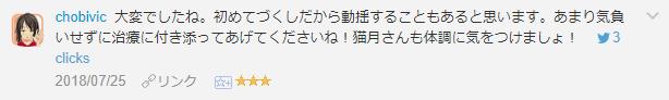 f:id:necozuki299:20181119005852p:plain