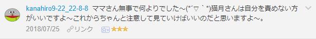 f:id:necozuki299:20181119005915p:plain