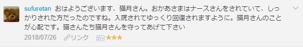 f:id:necozuki299:20181119010311p:plain
