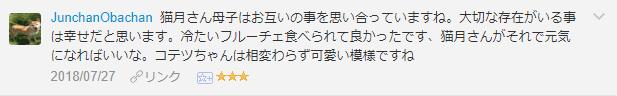 f:id:necozuki299:20181119011037p:plain