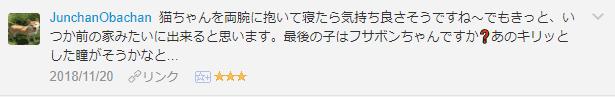 f:id:necozuki299:20181121021147p:plain