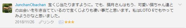 f:id:necozuki299:20181127005502p:plain