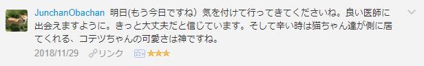 f:id:necozuki299:20181129172947p:plain