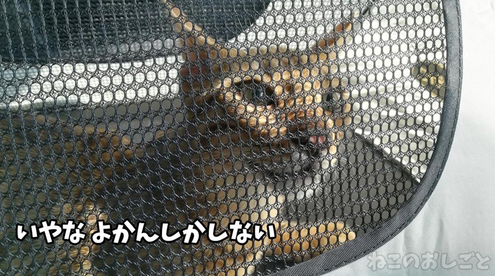 f:id:necozuki299:20181218124214j:plain