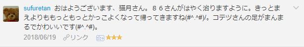 f:id:necozuki299:20181218135529p:plain
